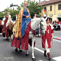freetoedit parade costumes myphoto palio pchorses