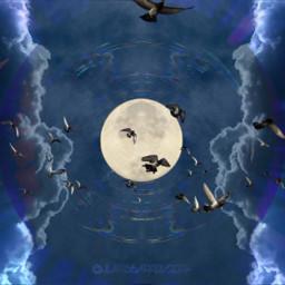 freetoedit stickerremix jlaart artlife moonlightmigration srcflyinghigh