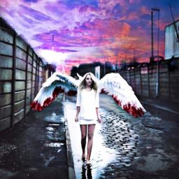 freetoedit angel wings blood tumblr