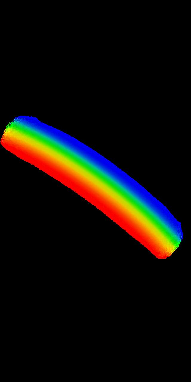 #arcoiris #colores #beautifulbirthmarks #tattooday #animaleye #aesthetic #tumblr