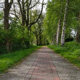 onmyway freetoedit walk walking morningwalk