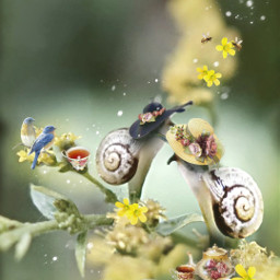 freetoedit vipshoutout teaparty friends snails