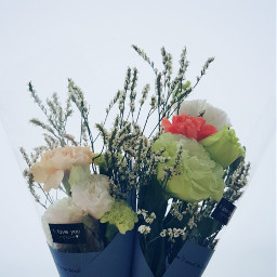 freetoedit parents day bunchofflowers flowers