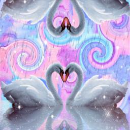 freetoedit upsidedown swan colorful colors ecupsidedown