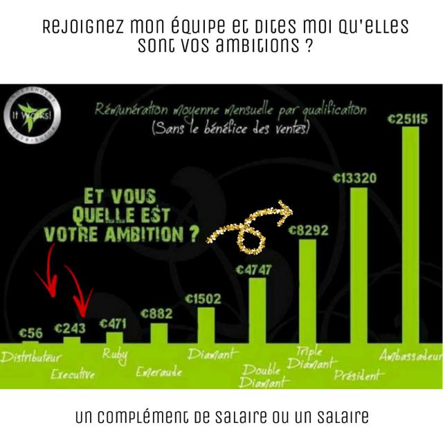 #sophieverjeot.itworkseu.com #itworks #salaire #complémentdesalaire