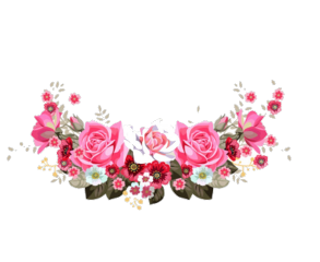 Gambar Bunga Untuk Edit Foto Picsart Gambar Bunga
