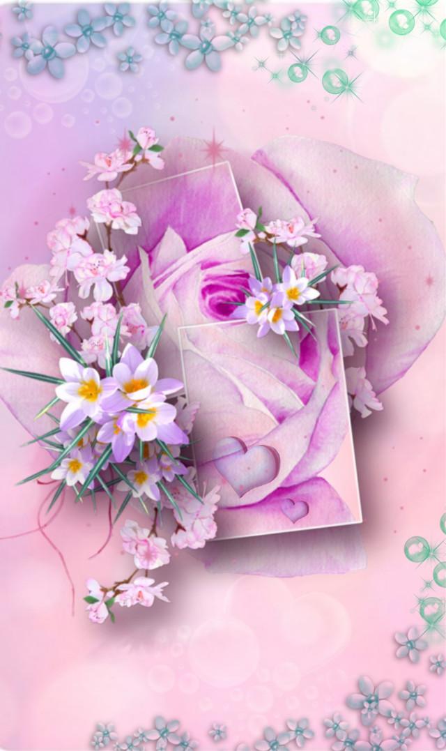#freetoedit #flowers #blumen #rosa