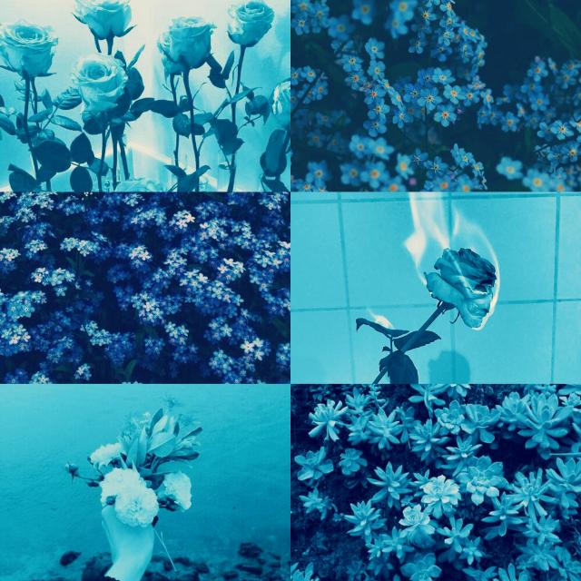 Blue aesthetic background . . . . . #freetoedit  #blueaesthetic #blue #aesthetic #background #bluebackground #aestheticbluebackground