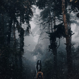 freetoedit bosque forest forestlife