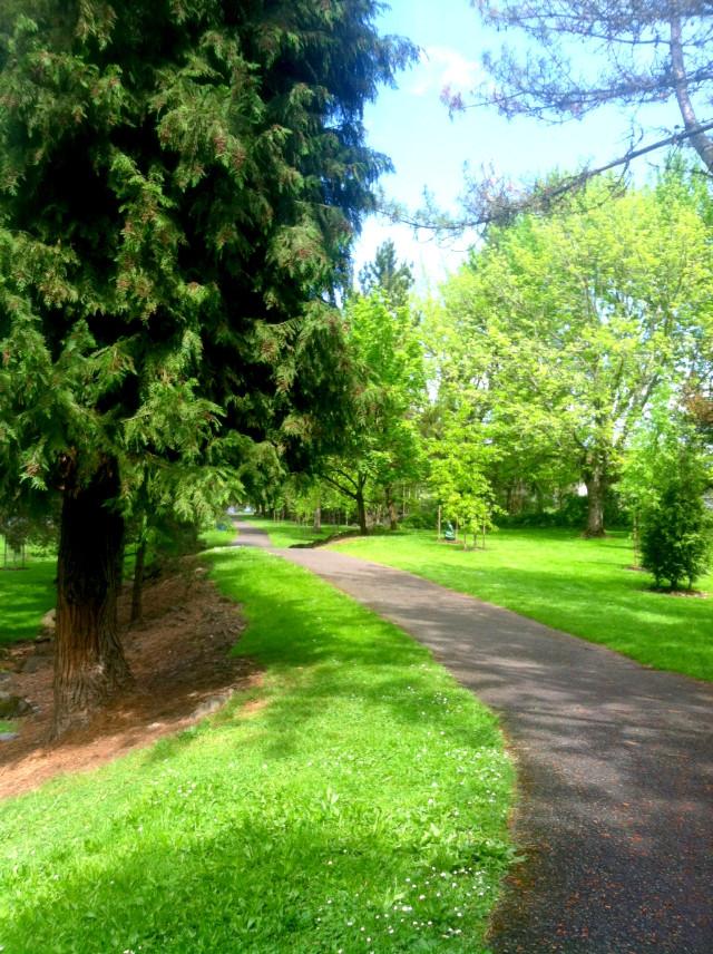 #jossettedhermanniphotography #parks #garden ,#trees #cityabdnature #