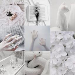 white aesthetic whiteaesthetic unsplash background freetoedit