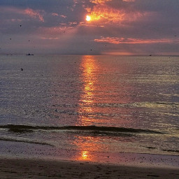 freetoedit sunset sea beach sun