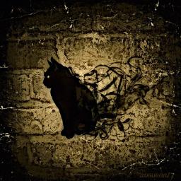 blackcat gatonegro tale cuento edgarallanpoe