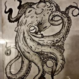freetoedit octopus drawing draw sketch