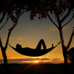 happyweekend hammock reflex trees myphoto freetoedit