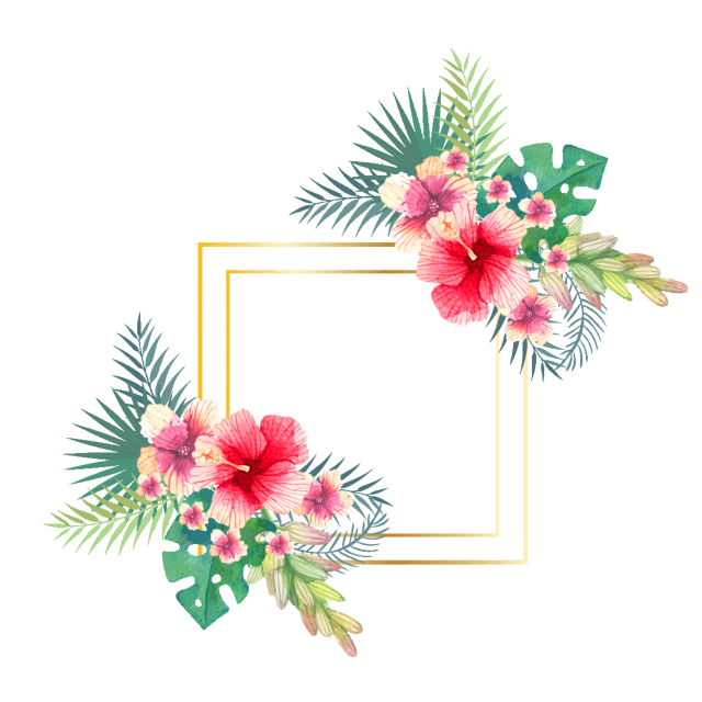 #ftestickers #flowers #tropical #background #frame #colorful