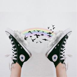 freetoedit rainbow birds cloud clouds