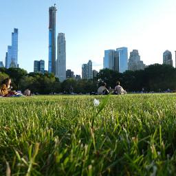 skyline newyork cities urban photography