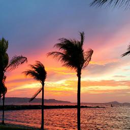 home beachsunset calm palmtrees sunset