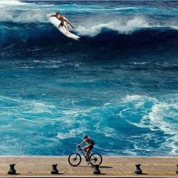 freetoedit mar ondas animaleye ircremixbicycle