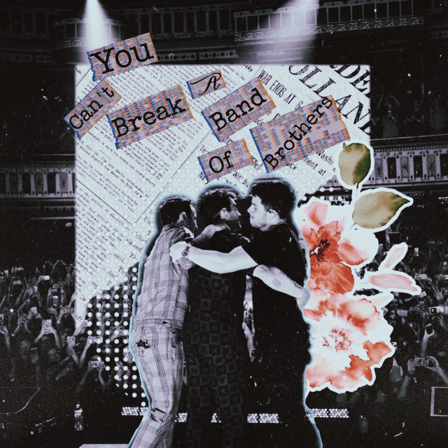 You can't break a band of brothers  #freetoedit #remixit#fantasy #jonasbrothers