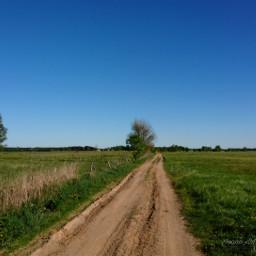 freetoedit nature road dirtroad landscape
