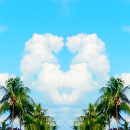freetoedit sky heart coconuttrees cloudheart