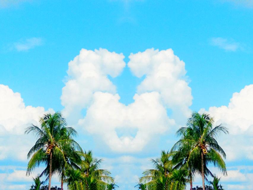 #sky #heart #coconuttrees #cloudheart