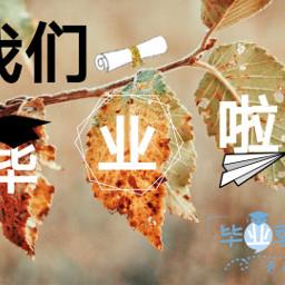 freetoedit srcgraduationchina2019 graduationchina2019
