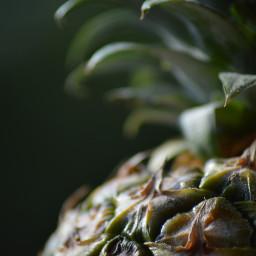 freetoedit photography fruit foodphotography pinapple