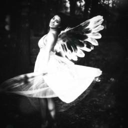 freetoedit remixed wings girl blackandwhite