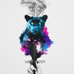 freetoedit panther pantera black smoke ecicecream