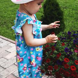 flowers sunnyday love