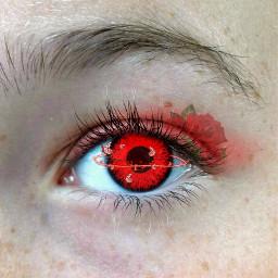 freetoedit eye eyes redeyes redeye