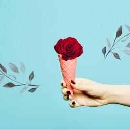 freetoedit ecicecream icecream