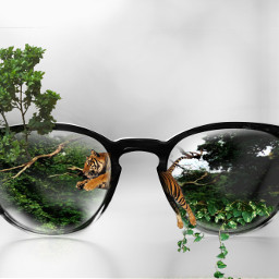 lunette freetoedit ircglasses glasses
