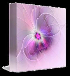 freetoedit box frame fractal