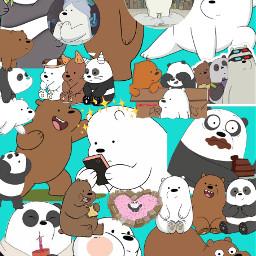 freetoedit bears polar panda pardo