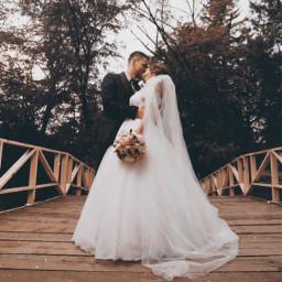 wedding love photography freetoedit