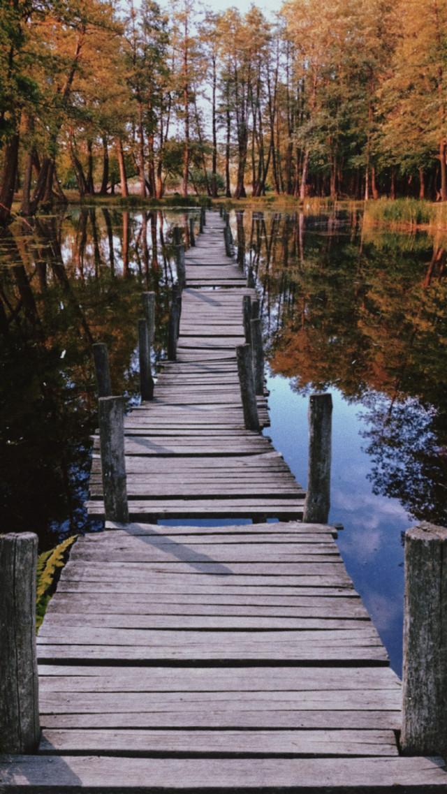 INSTAGRAM: @margo34277 YOUTUBE CHANNEL: Margo Picsart FACEBOOK PAGE: Margo Picsart ✨❤️🙌  #freetoedit #day #plrd #vintage #water #walk #puente #landscape #paisaje #arbol #lago #reflection