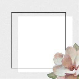 freetoedit flower border frame framework