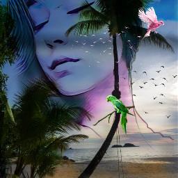 freetoedit female transquility paradise treesswaying myeditoffreetoedit
