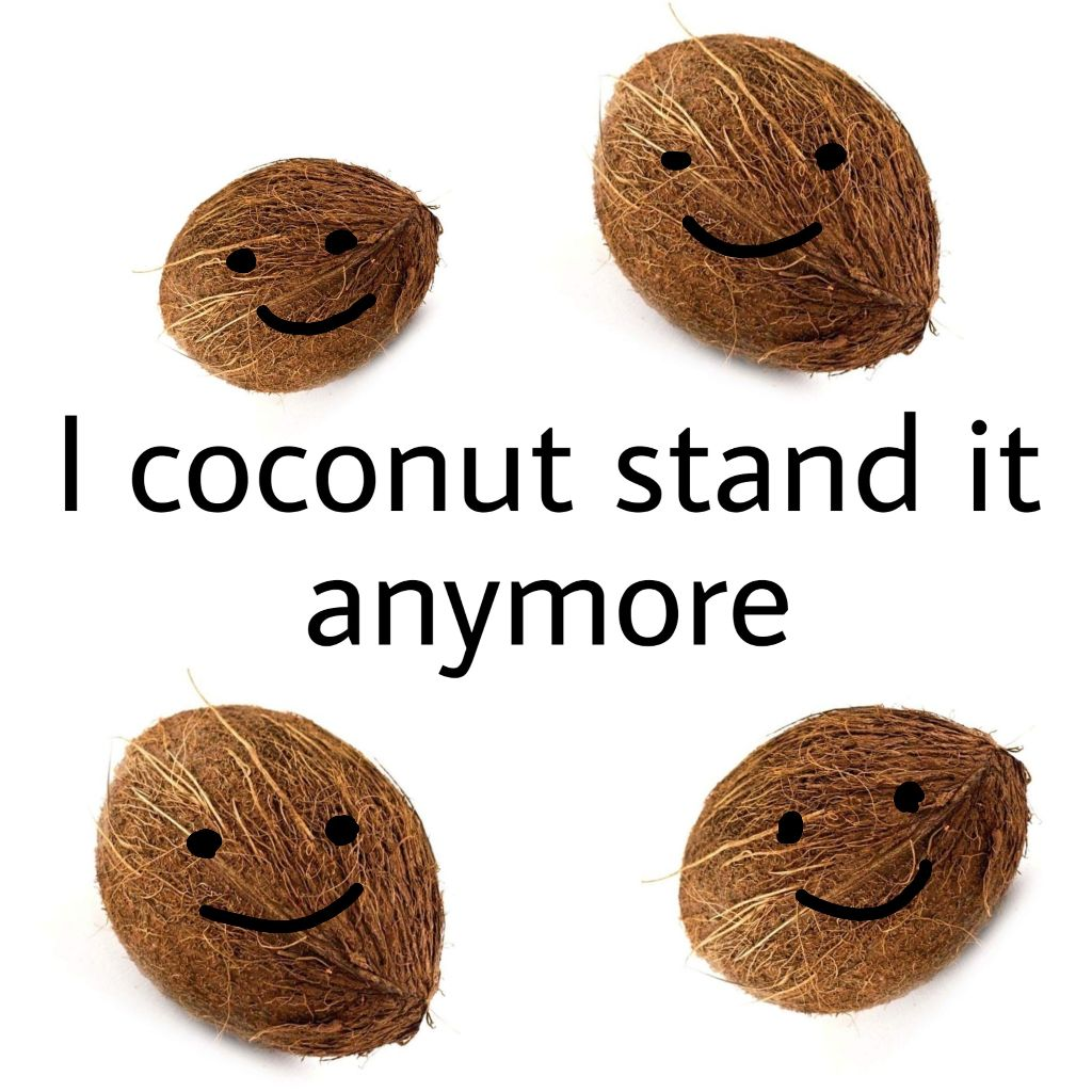 This one probably doesn't make sense but idc cause I fell asleep on the couch and no bothered to wake me up till the middle of the night . . . . . #puns #punsfordays #sadbutrad #sadbutfab #depression #why #meme #funnyshit #coconut
