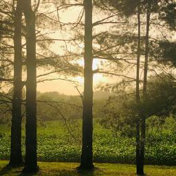myphoto summertime beforethestorm hotsummerday sunsetting freetoedit