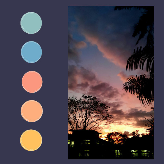 #ecpaletteshow #paletteshow #sunsettime #sunsetsky
