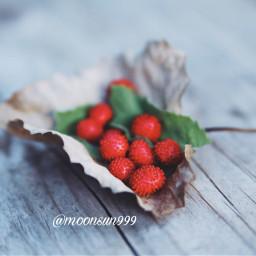 freetoedit photography myclick berries