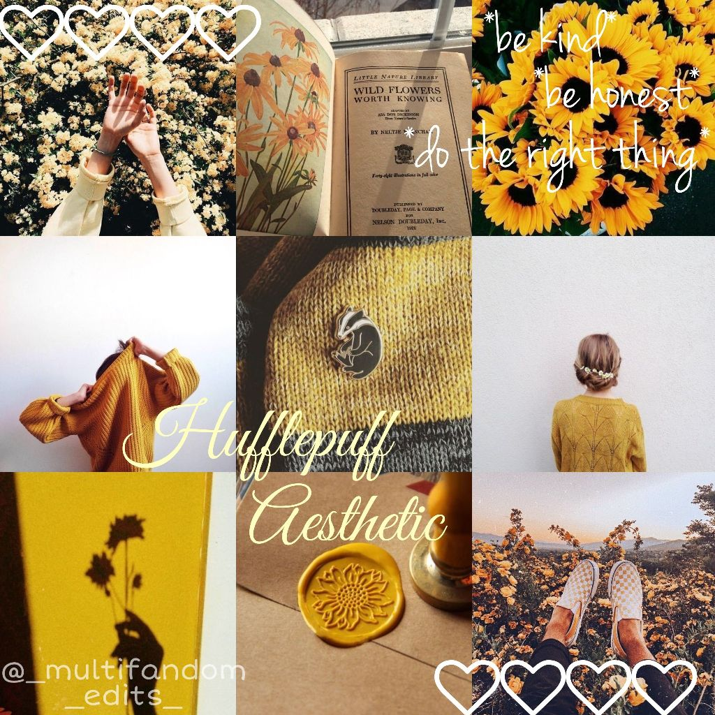 Hufflepuff Aesthetic I Deleted My Previous One Caus
