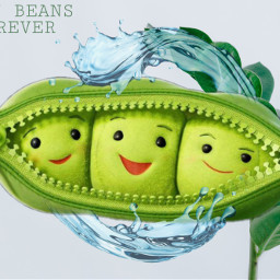 freetoedit greenbeans
