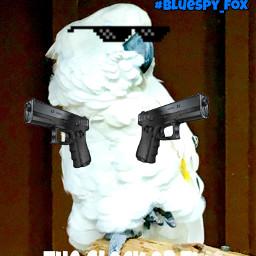 blue_spy freetoedit blue
