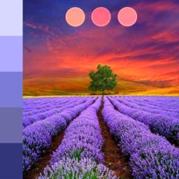 freetoedit ecpaletteshow palette landscape lavender